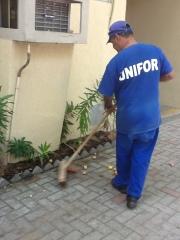 Funcionário retirando o lixo.